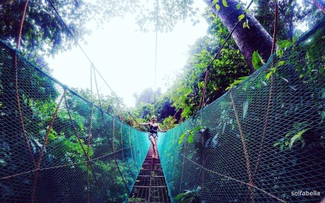 el nidos canopy walk